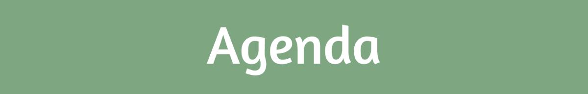 Descrição da imagem: informação textual Agenda