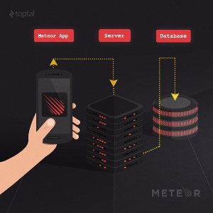 Building Real-Time Web Applications with Meteor