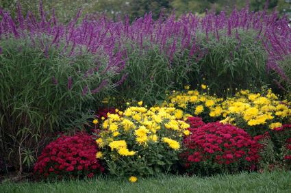 Romence Garden Center in Portage