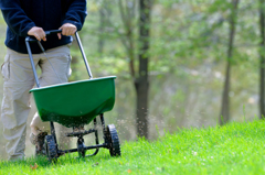Romence Gardens Lawn Fertilizer Program