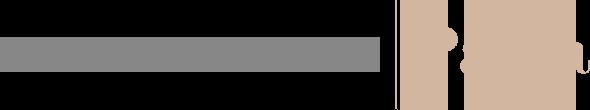 Los Viajes de Paula logo