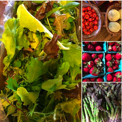 Our produce fridge is overflowing with fresh Organic fruits and veggies! A feast for your eyes and your table!