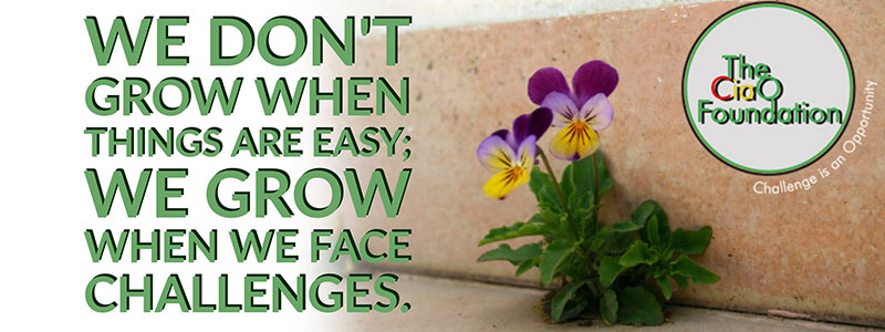 We don't grow when things are easy; we grow when we face challenges