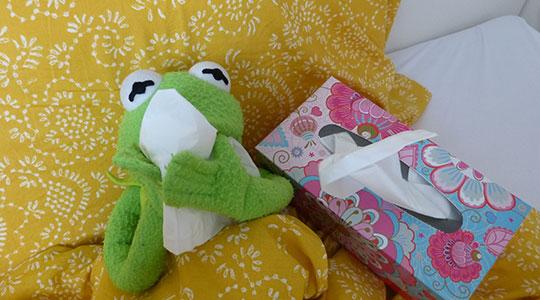 Zieke speelgoedkikker met doos met tissues