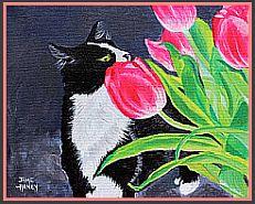 Cat & Tulips
