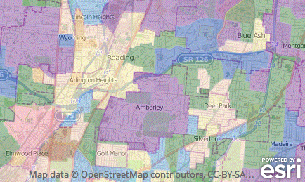 More Than Just Voter History: Esri Tapestry Segmentation