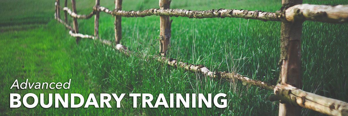 Boundary Training