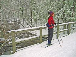 Skier pauses on a log bridge.