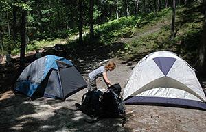 White Pine Campground