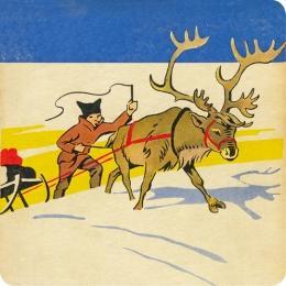 Kinderprogramma husky Lapland