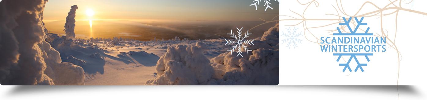Lapland rendieren