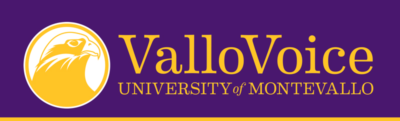 Vallo voice graphic