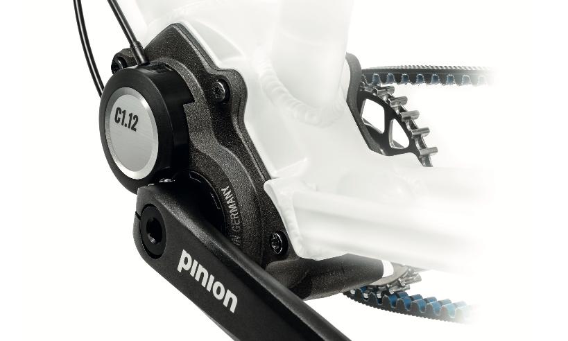 Pinion 12-Gang