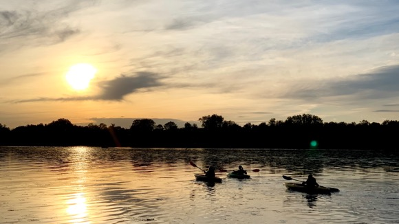 Three kayakers on a sunset paddle.