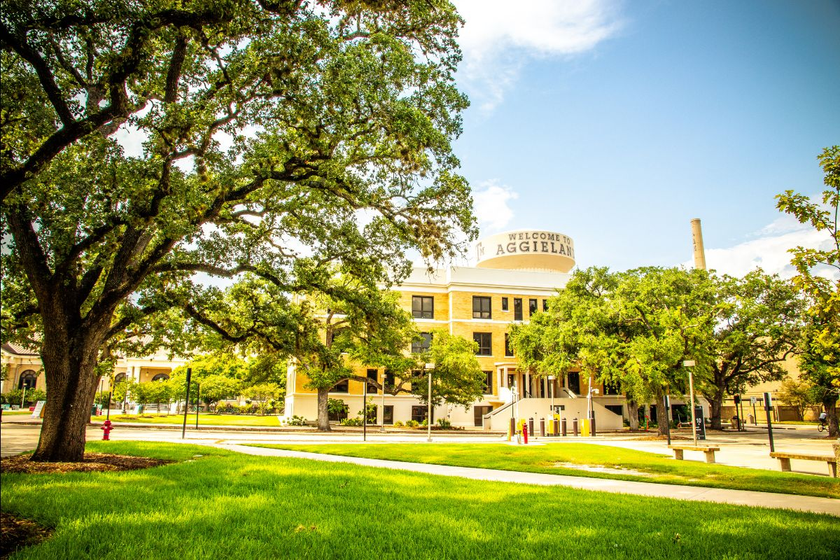 Iconic Aggieland water tower viewed from Military Walk across Ross St. behind Milner Hall. It is sunny out, and the live oak trees are lush and green.
