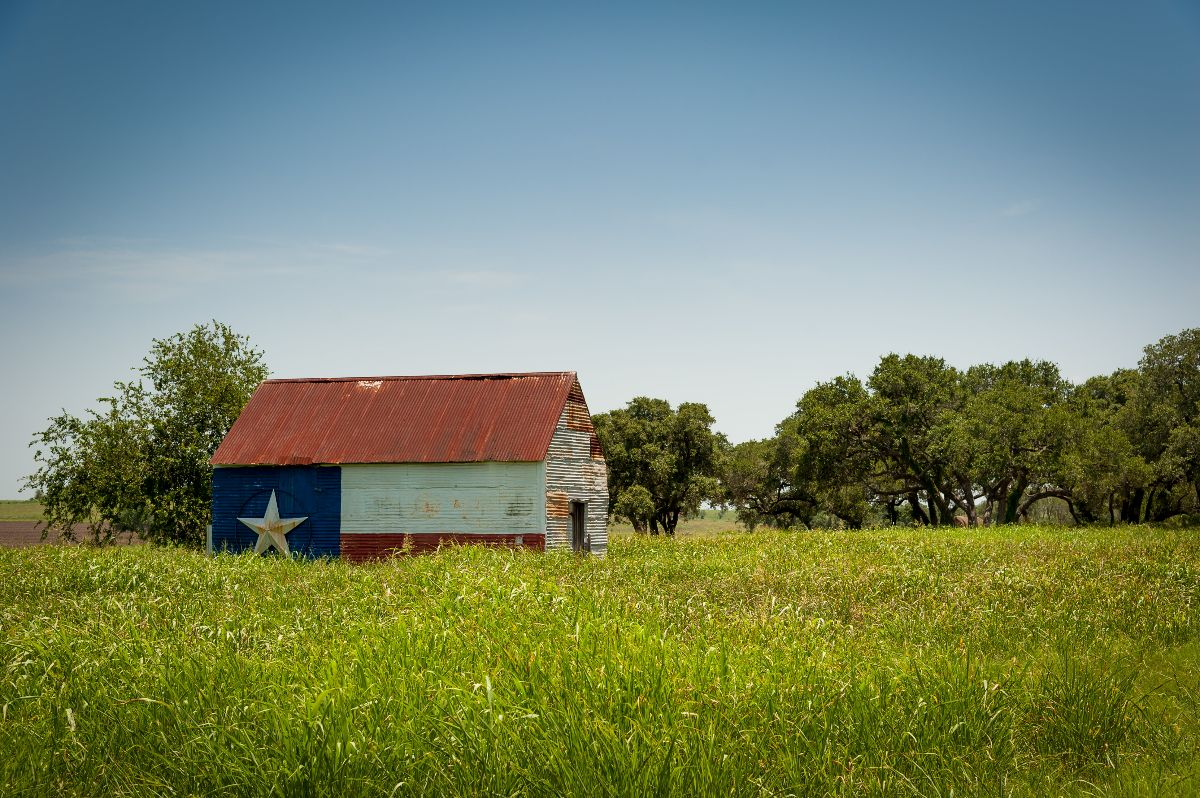 Barn painted like Texas flag in green grass on a clear day
