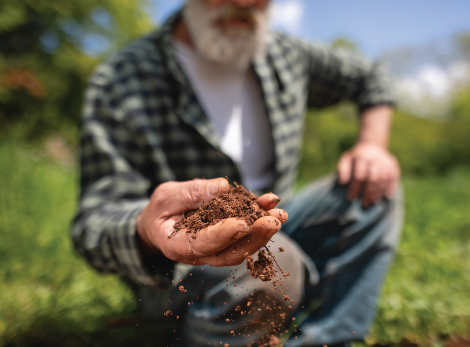 man with gray beard in a flannel holding soil