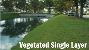 Vegetated Channels: Single Layer
