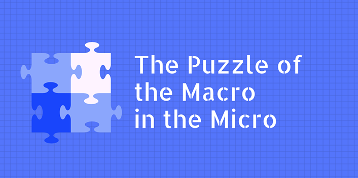 The Puzzle of the Macro in the Micro
