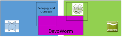 OpenWorm badge system