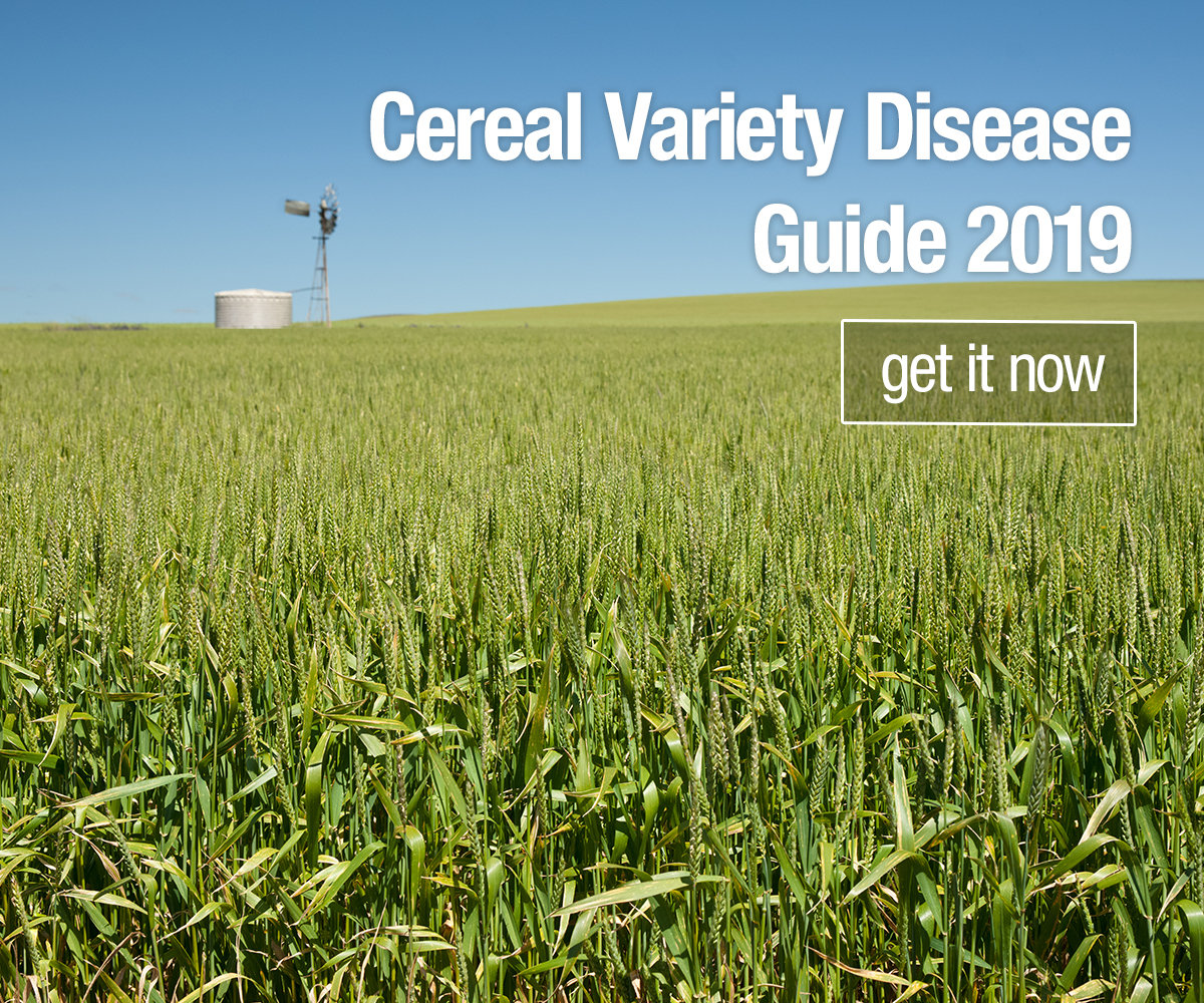 Cereal Variety Disease Guide 2019 - Get it now