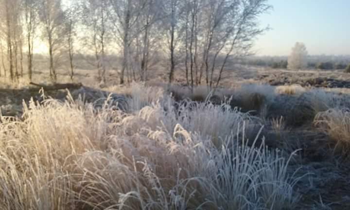 97733bb7-e3f7-45f6-a139-ec77edd21f1b > Wat valt er voor een leider te leren van de winter? | inVerbinding