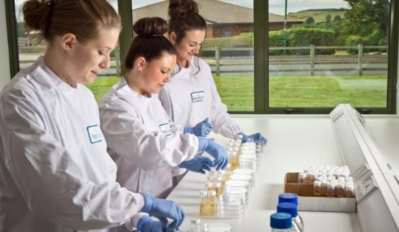 Microbiology Testing Laboratory