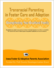 Cover for Transracial Parenting in Foster Care and Adoption