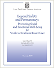 Beyond Safety and Permanency cover