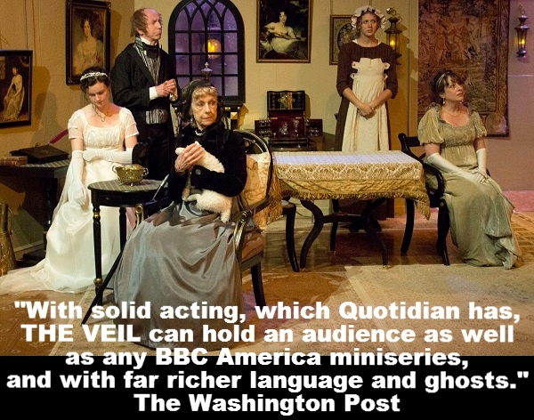 """""""With solid acting, which Quotidian has, THE VEIL can hold an audience as well as any BBC America miniseries, and with far richer language and ghosts."""" The Washington Post"""