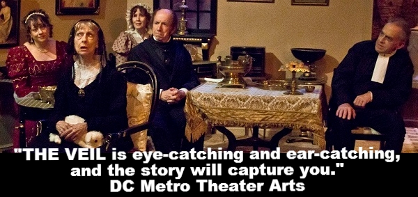 """""""THE VEIL is eye-catching and ear-catching, and the story will capture you."""" DC Metro Theater Arts"""