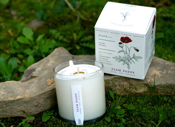 Kobo Seeds Candle Siam Poppy