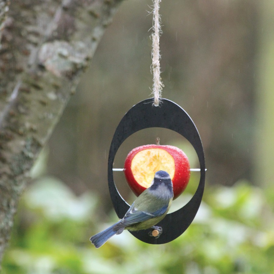 Ashortwalk Apple Bird Feeder