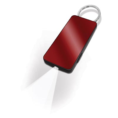 Call Key Key Ring with LED torch
