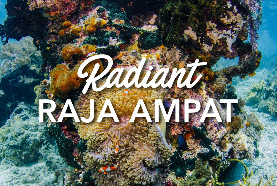 Radiant RAJA AMPAT
