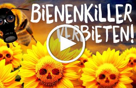Bienenkiller verbieten: jetzt unterschreiben