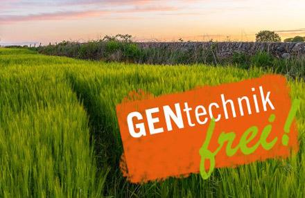 Schottland verbietet Agrar-Gentechnik
