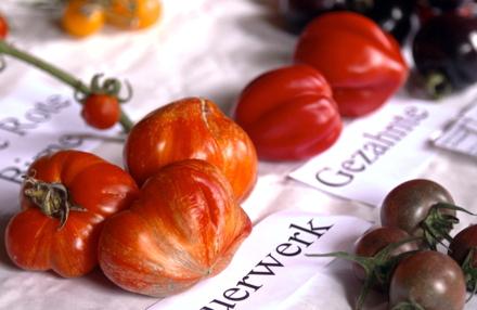 TV-Tipp Verbotenes Gemüse