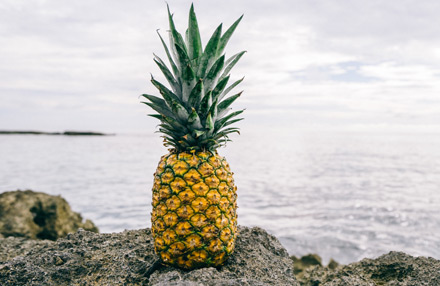 Ananasleder