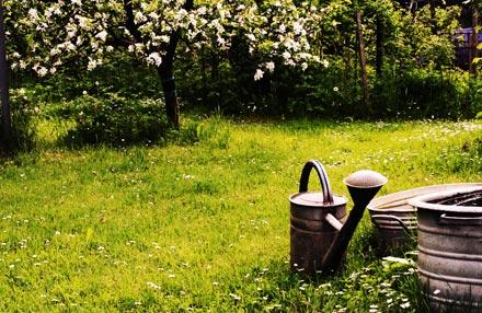 Gartenpaten: Hier finden Gartenbesitzer und Gärtner zusammen
