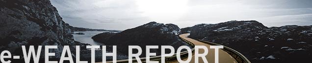e-Wealth Report