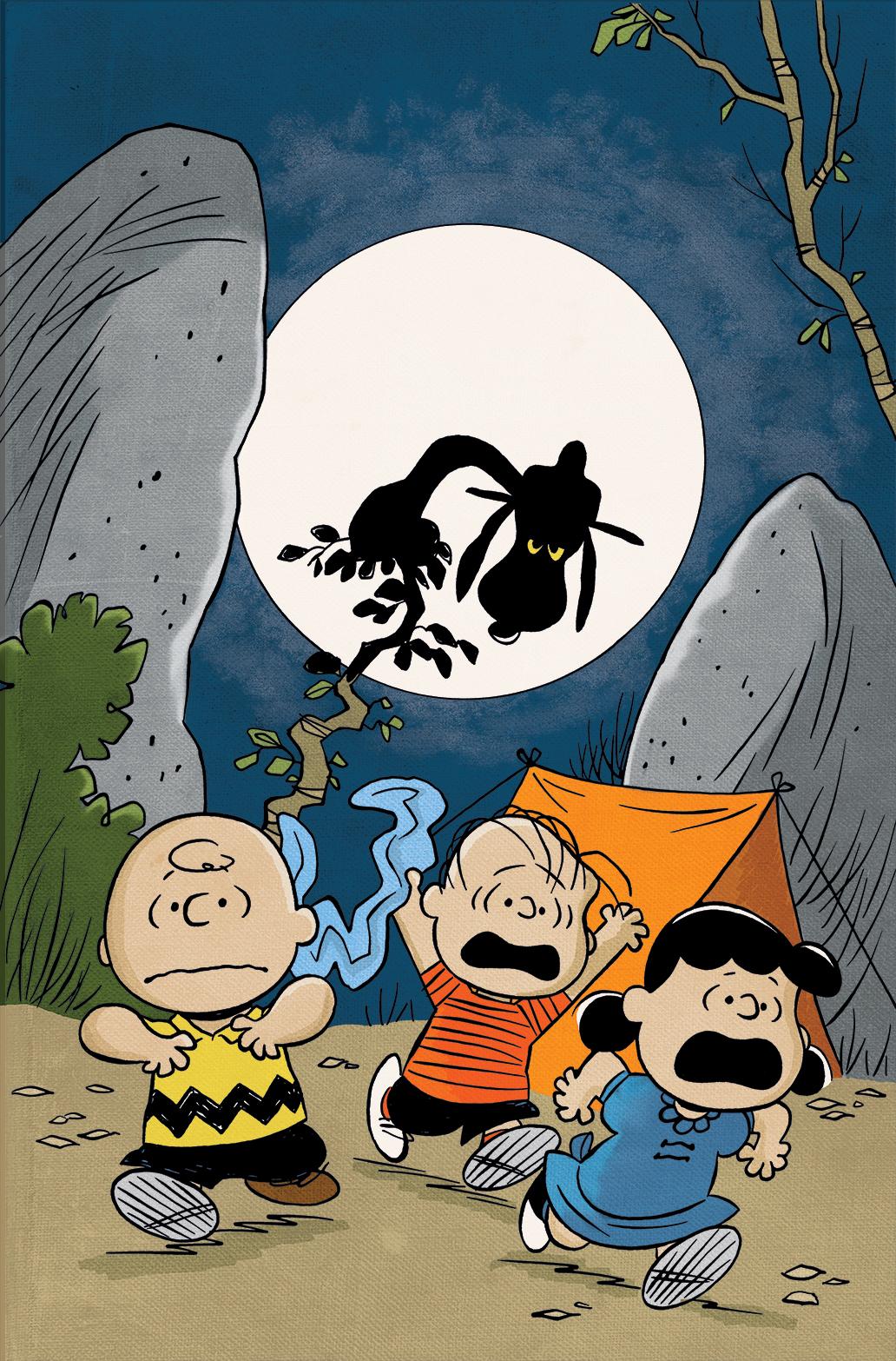 Peanuts #25 DCC Exclusive