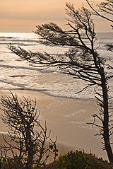 """""""Coastal Moods"""" features photography by Ellen Hamill in the Upstairs Gallery in February."""