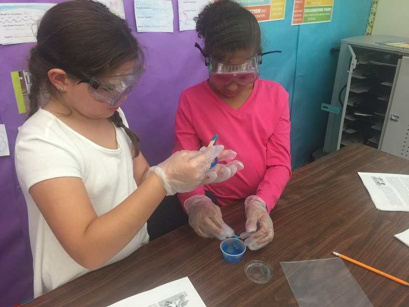 Two girls in 3rd grade study a blue mystery substance