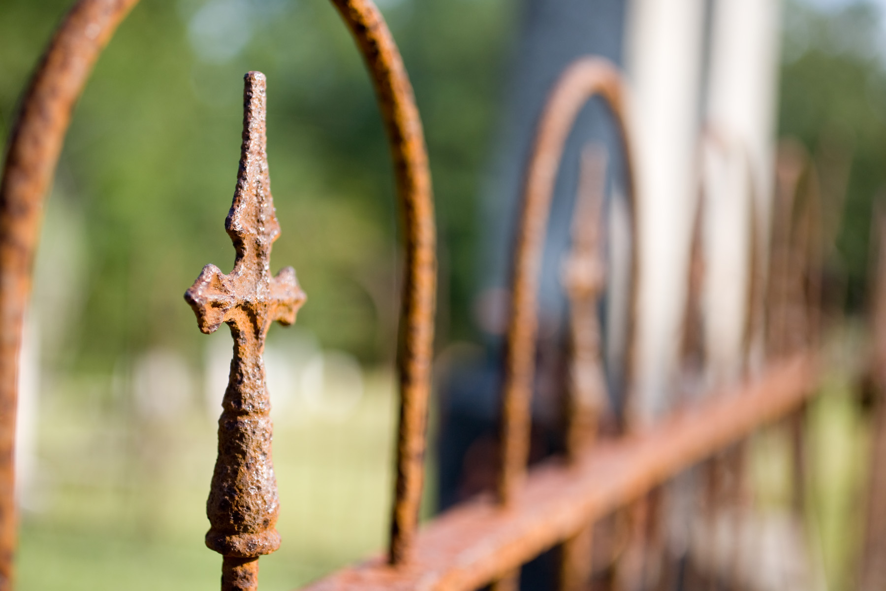 Rusted Fence by Amy Nabors