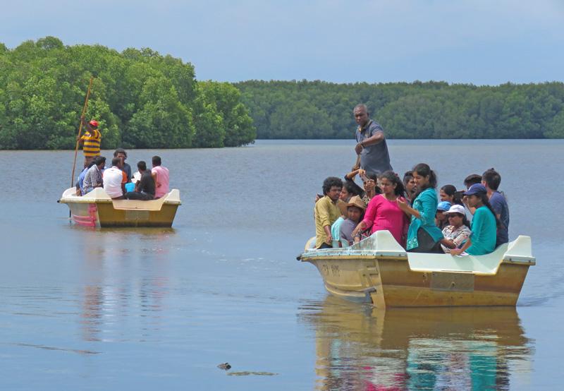Sudeesa mangroves tour