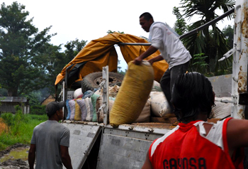 Loading sacks of corn to sell in the lowland markets