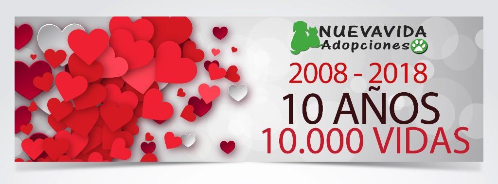10 años 10.000 vidas salvadas