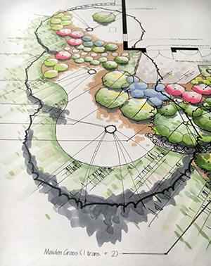 Landscaping Design rendering