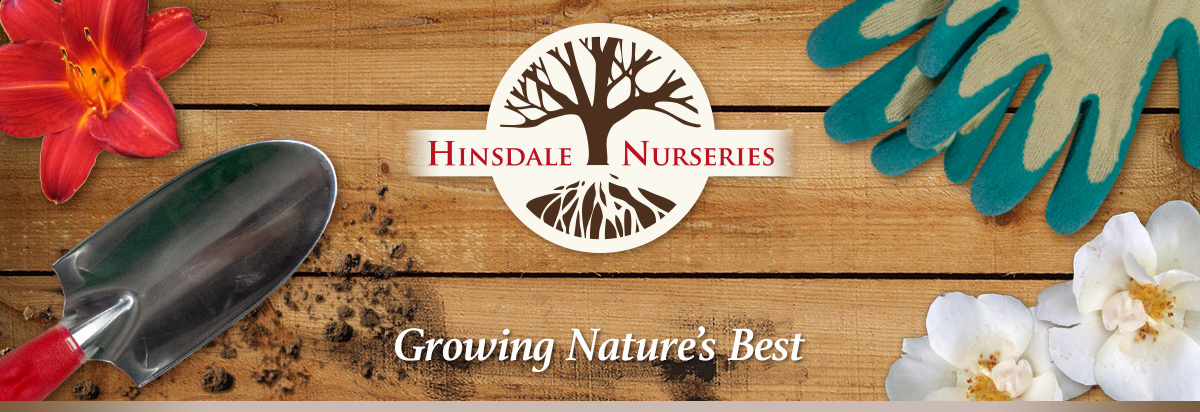 Growing Nature's Best - Visit our website